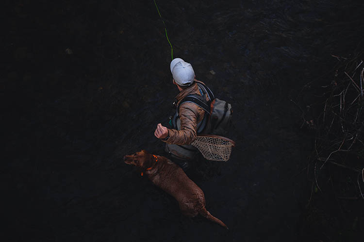 Man with dog in creek fly fishing.