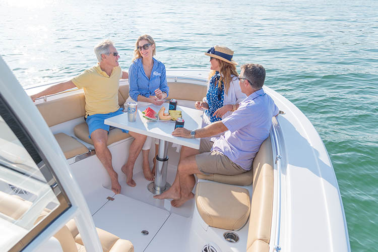 Cover image for the post Can I Drink & Drive My Boat?