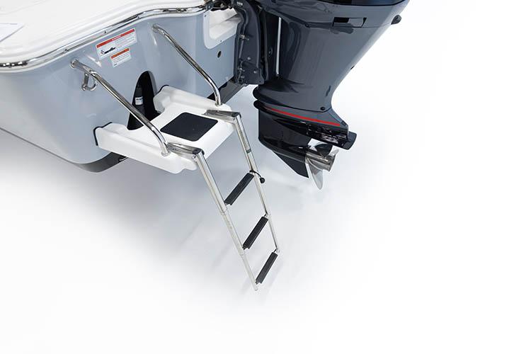 Detail image of Swim Platform w/ 3-Step Ladder