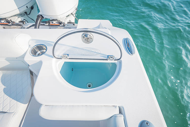 Detail image of Transom Livewell