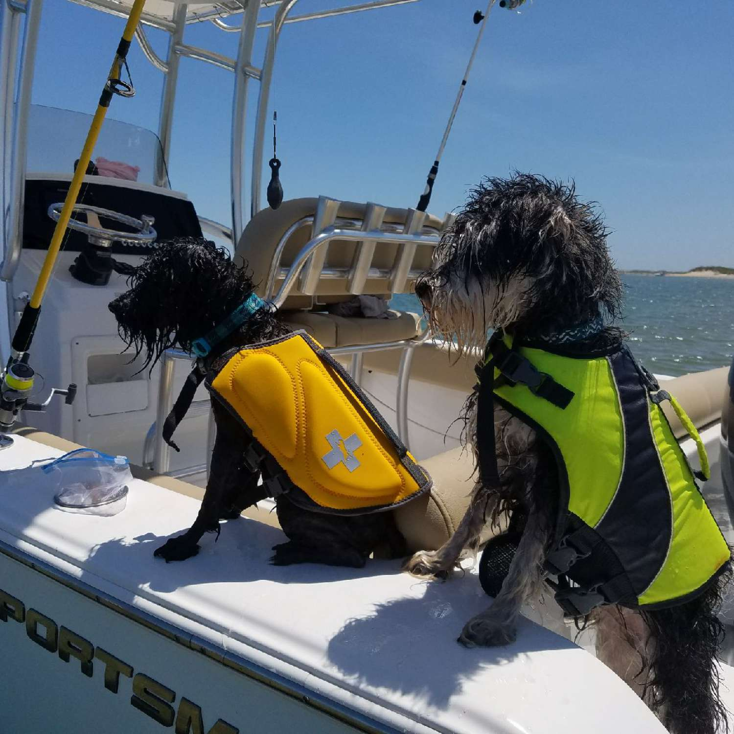 Title: Pups Enjoying The Boat - On board their Sportsman Heritage 211 Center Console - Location: Vanceboro, North Carolina. Participating in the Photo Contest #SportsmanJune2017