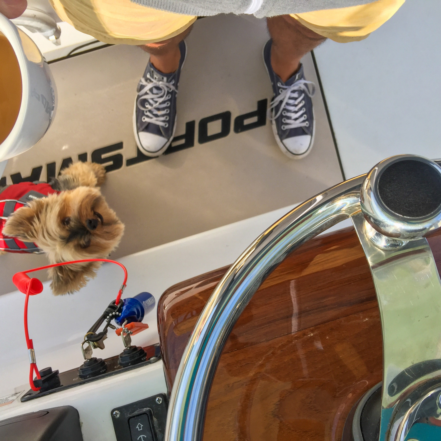 Title: sailors best friend - On board their Sportsman Heritage 251 Center Console - Location: Oakdale, NY. Participating in the Photo Contest #SportsmanJanuary2018