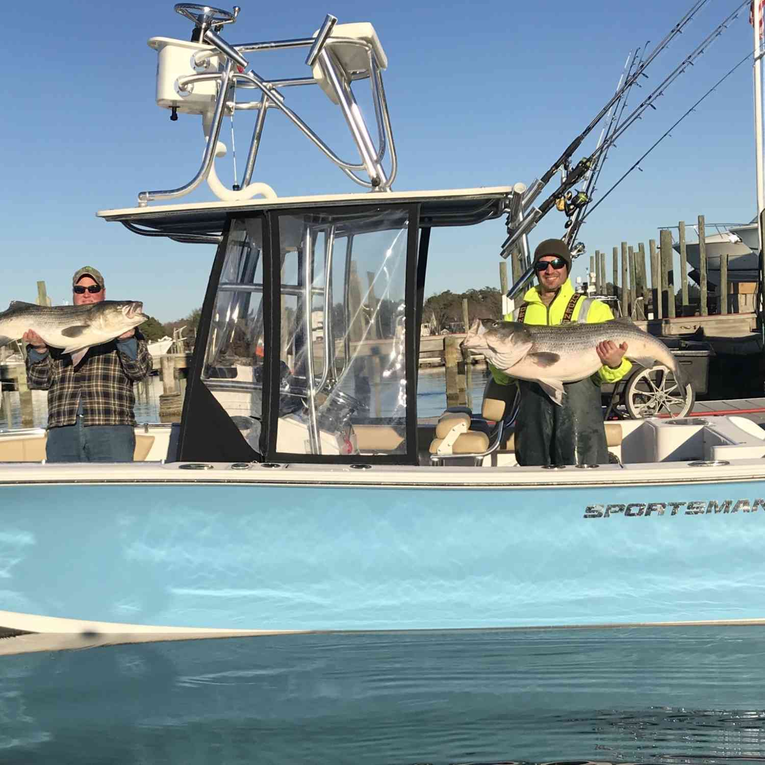 Title: Citation Rockfish BABY!! - On board their Sportsman Open 232 Center Console - Location: Yorktown, Va. Participating in the Photo Contest #SportsmanJune2018
