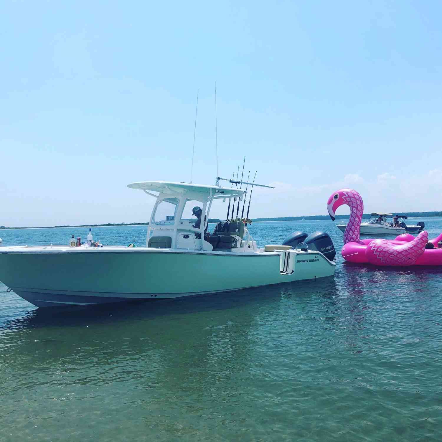 Title: Flamingo island - On board their Sportsman Open 282 Center Console - Location: North Myrtle beach, sc. Participating in the Photo Contest #SportsmanJune2018