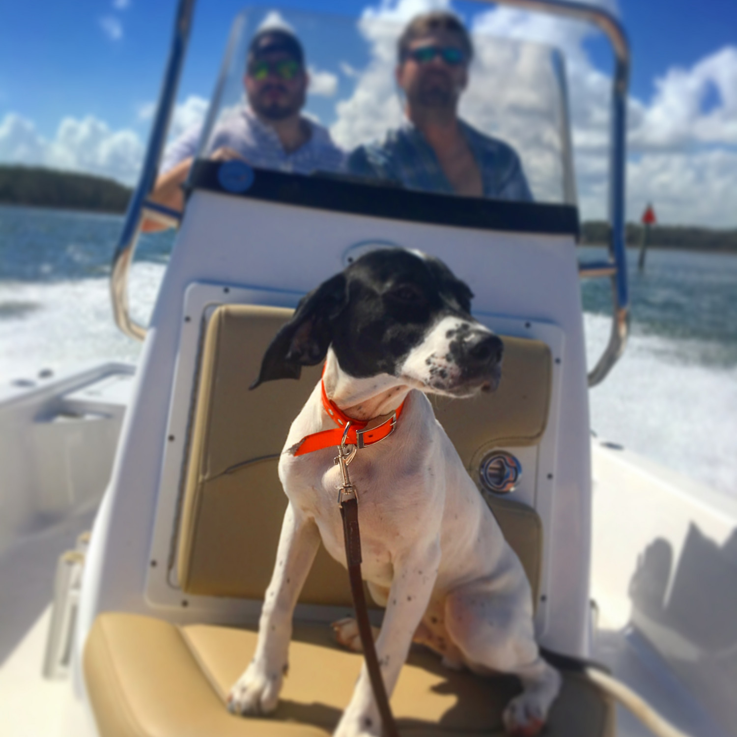 Title: Look, I'm the captain now. - On board their Sportsman Masters 207 Bay Boat - Location: Savannah, Ga. Participating in the Photo Contest #SportsmanMarch2018