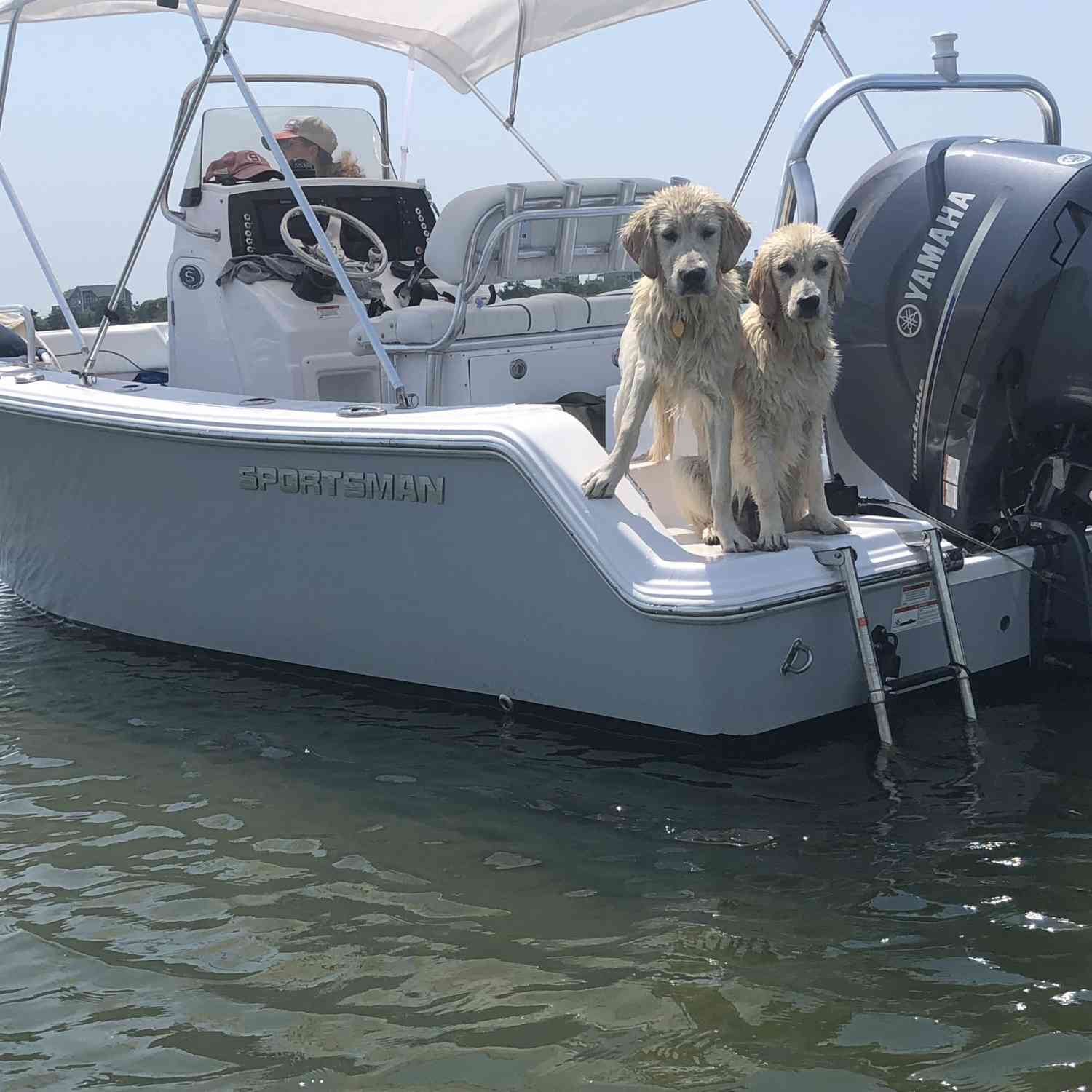 Title: Family and Dog Friendly - On board their Sportsman Open 212 Center Console - Location: Westerly RI. Participating in the Photo Contest #SportsmanSeptember2018