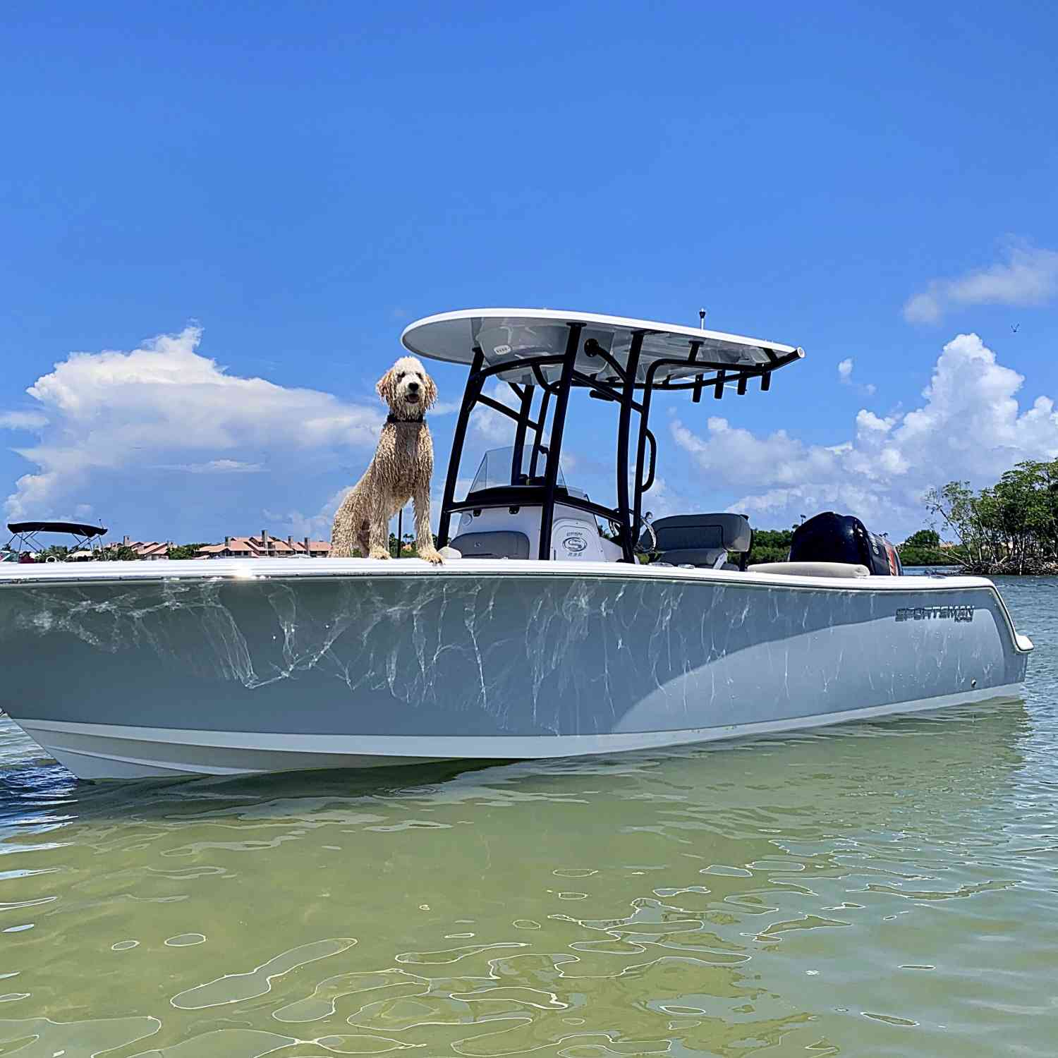 Title: Captain Maverick - On board their Sportsman Heritage 231 Center Console - Location: Stuart, Florida. Participating in the Photo Contest #SportsmanAugust2020