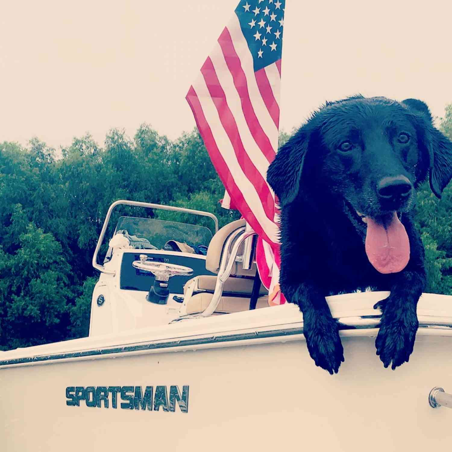Title: Ruff day - On board their Sportsman Masters 227 Bay Boat - Location: False River, Louisiana. Participating in the Photo Contest #SportsmanAugust2020
