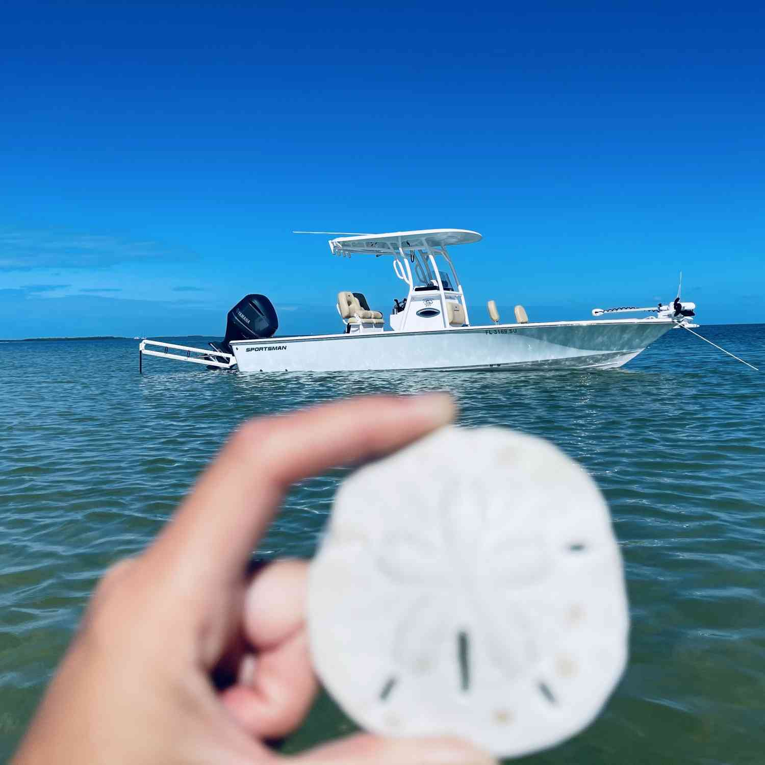 Title: Thanksgiving day - On board their Sportsman Masters 247 Bay Boat - Location: Anclote key Florida. Participating in the Photo Contest #SportsmanDecember2020