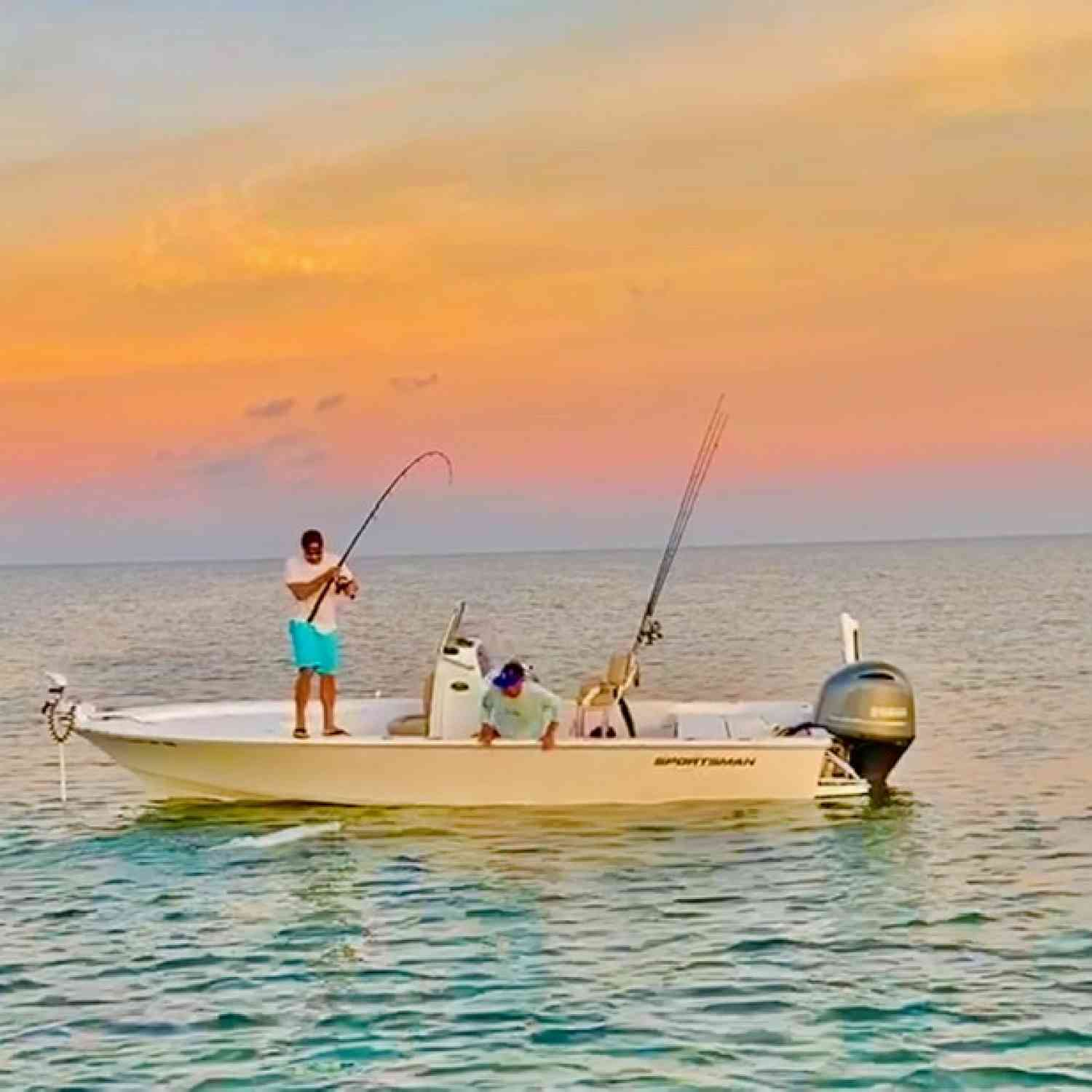 Title: Tarpon on the beach - On board their Sportsman Masters 227 Bay Boat - Location: St. Petersburg. Participating in the Photo Contest #SportsmanJune2020