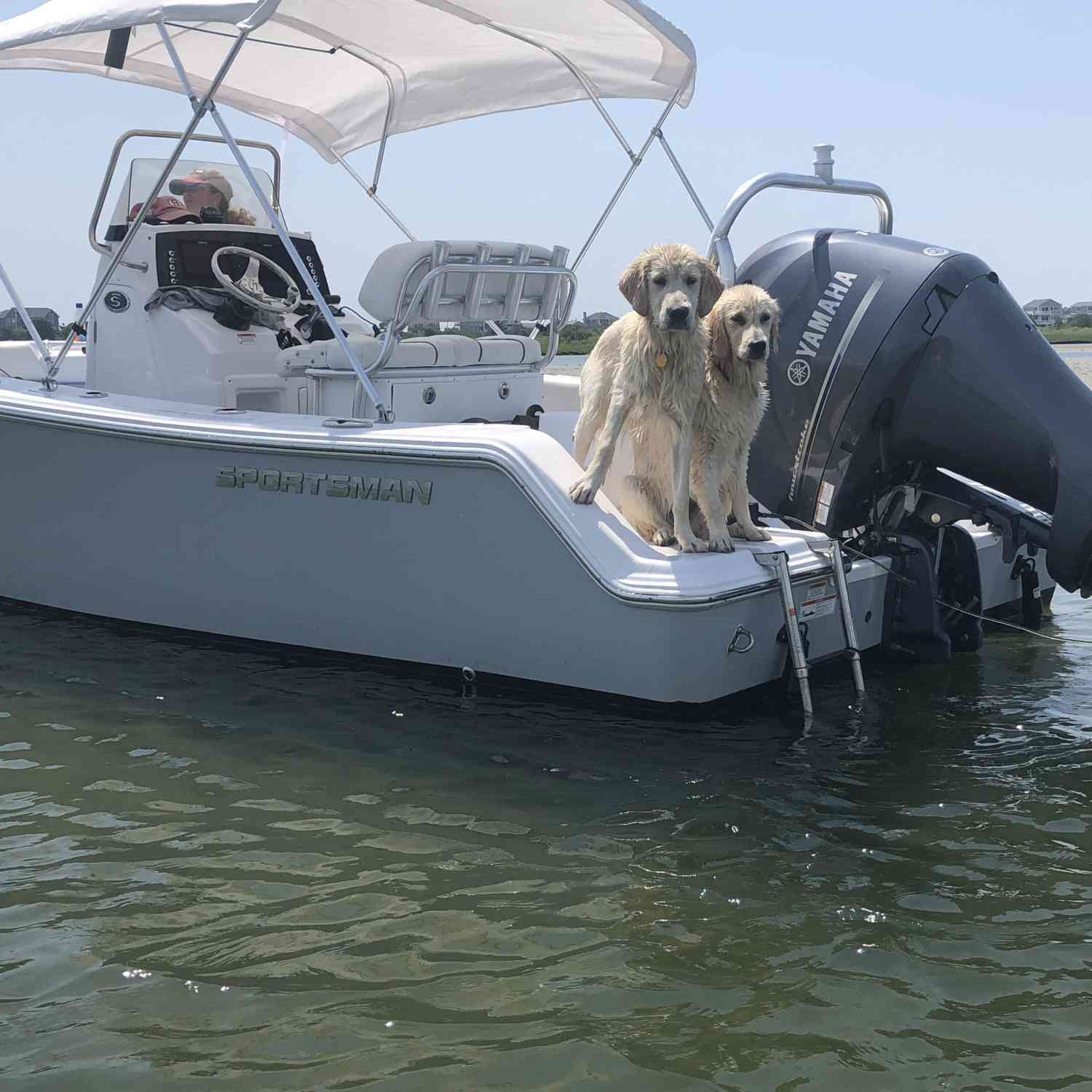 Title: Pet-friendly boat - On board their Sportsman Open 212 Center Console - Location: Westerly, RI. Participating in the Photo Contest #SportsmanMay2020