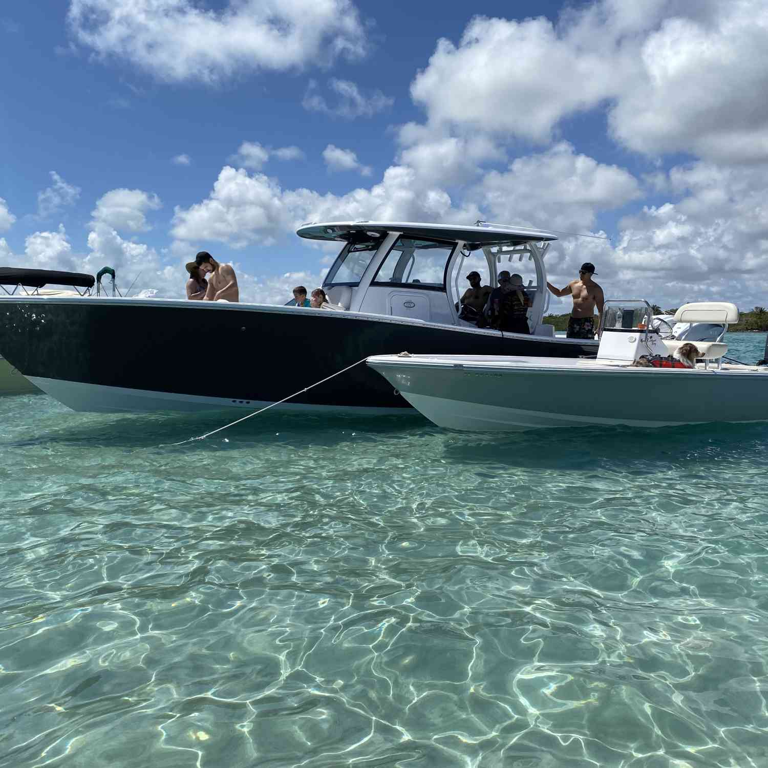 Title: Haulover Sandbar - On board their Sportsman Island Bay 20 Bay Boat - Location: Miami, FL. Participating in the Photo Contest #SportsmanMay2020