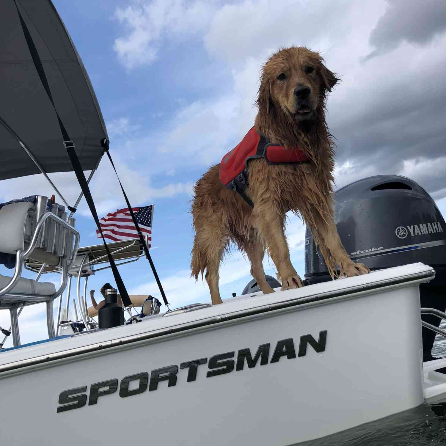 Title: The Real Captain - On board their Sportsman Masters 207 Bay Boat - Location: Belle Isle, Florida. Participating in the Photo Contest #SportsmanMay2020