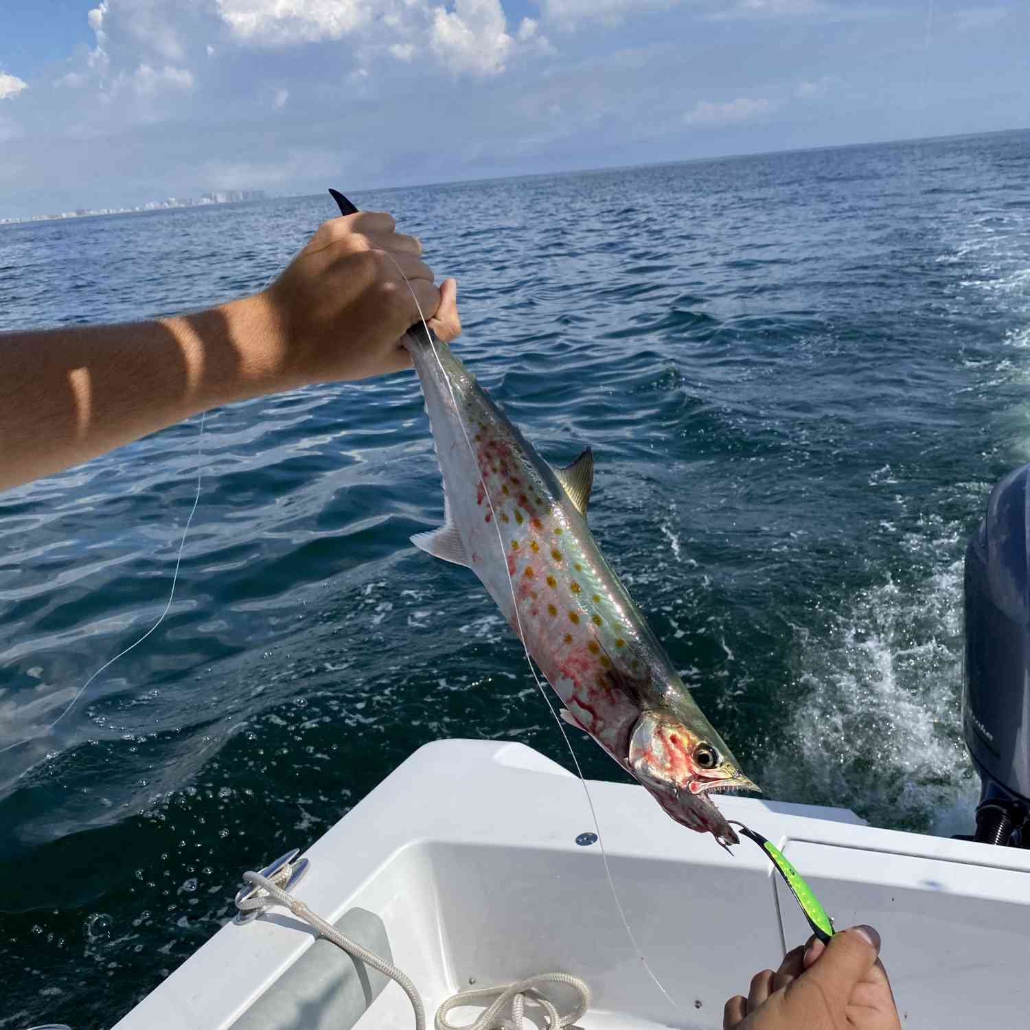 Title: Mackerel off the coast of OC Maryland. - On board their Sportsman Open 232 Center Console - Location: OC Maryland. Participating in the Photo Contest #SportsmanSeptember2020