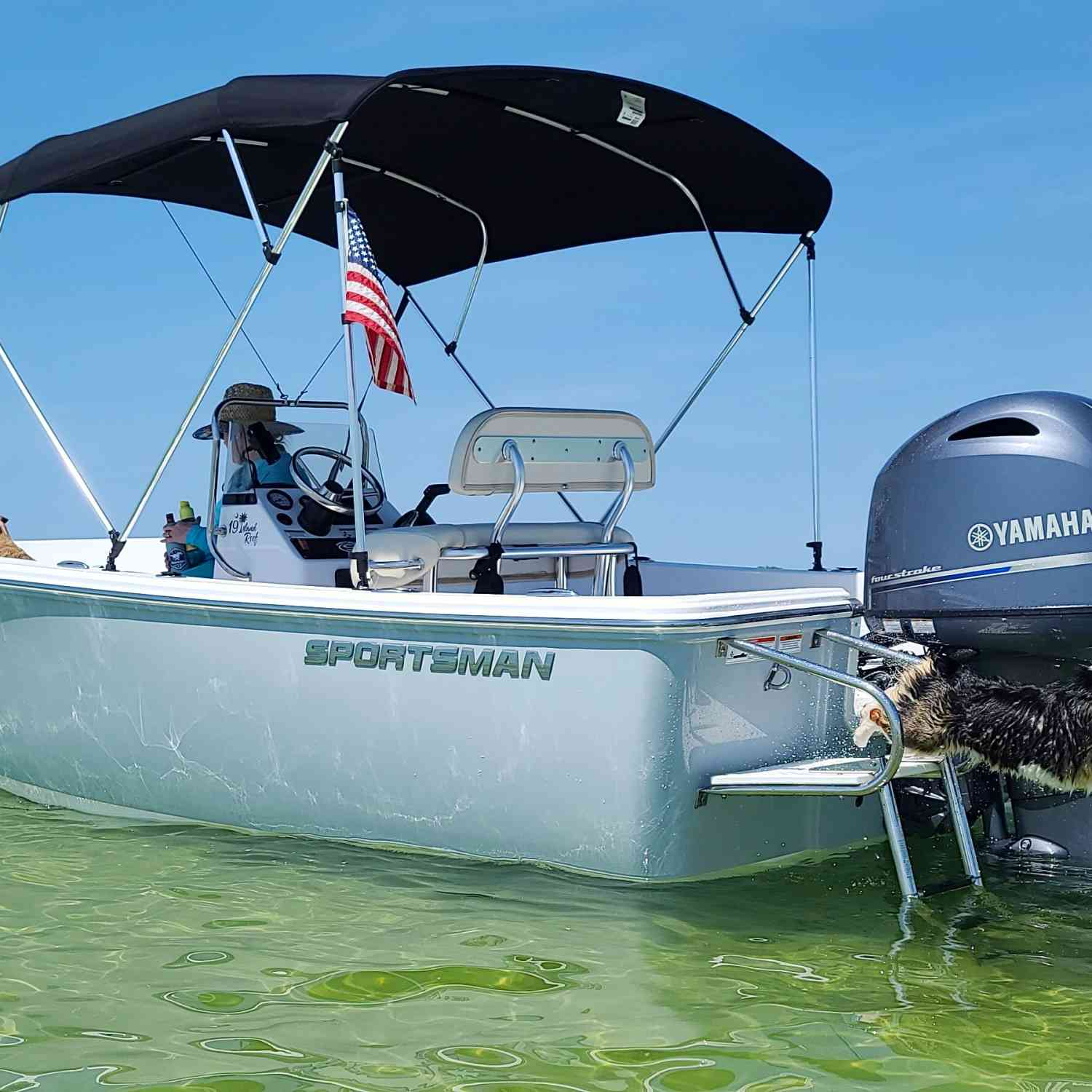 This is my 2018 Island Reef storm cloud grey with white bottom matched with a 115 yamy. We've g...