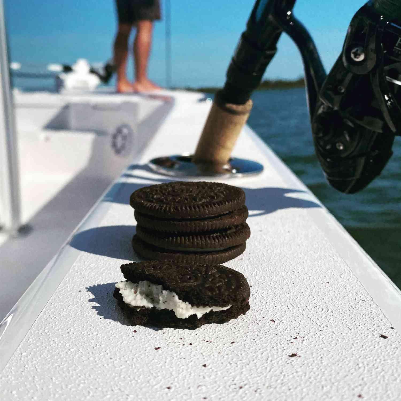 Incoming tide snacks.